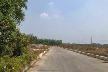 Industrial land for lease in Tay Ninh